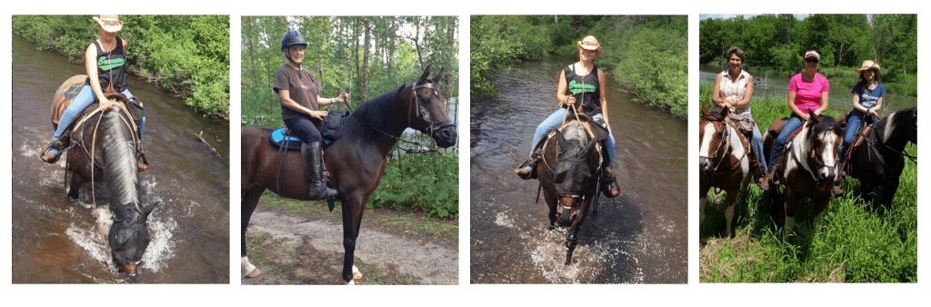 Ideal Trail Riding and Back Country Outfitting