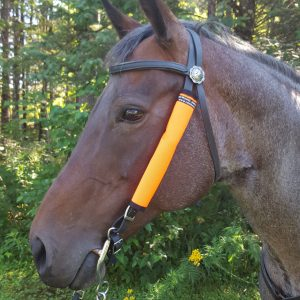 Be-Seen Headstall Wraps